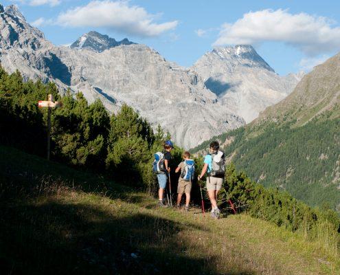 Alta val zebrù trekking escursione famiglia bambini cervi