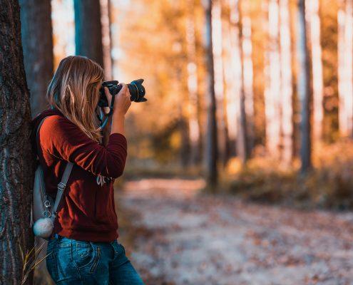 Caccia fotografica wild natura foto